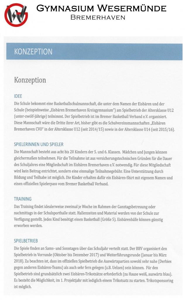 2017-Infobrief-Eisbären-Schulmannschaft-Homepage-2